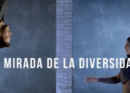 DIVEM, diversidad, mirada diversidad, diversidad cultural, empresas